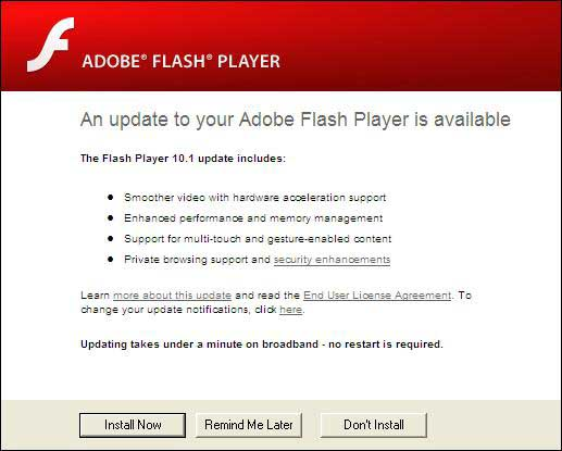 Adobe Flash Player for Windows 10